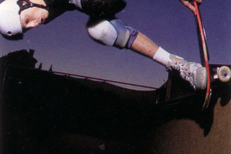 hawk-1990